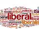 Menyoal Liberal