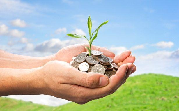 Menggagas Ekonomi Berbasis Kelestarian