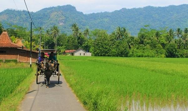 Merumuskan Kembali Kemandirian Desa