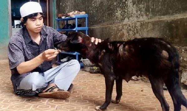 Anjing Masuk Masjid Menistakan Agama?