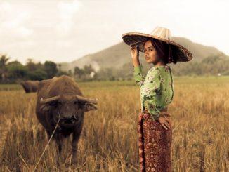 Wajah Perempuan Desa dalam Pembangunan