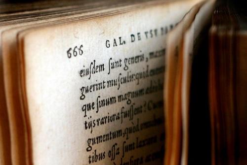 Bahasa Pemantik Teologi