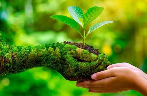 Pemerhati Lingkungan dan LSM Tetap Dilibatkan dalam Proses Amdal