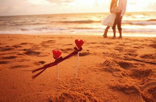 Cara Kerja Otak Cinta Romantis Homo Sapiens
